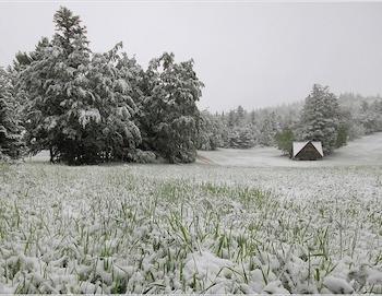 L'hiver en mai : une situation récurrente