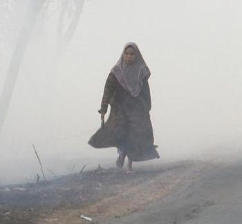 De violents incendies enveloppent l'Asie du Sud-Est dans un nuage toxique